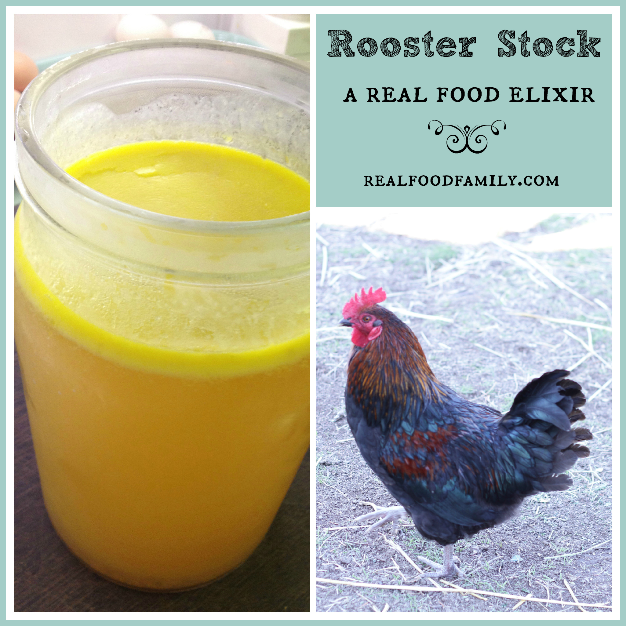 Rooster Stock…A Real Food Elixir