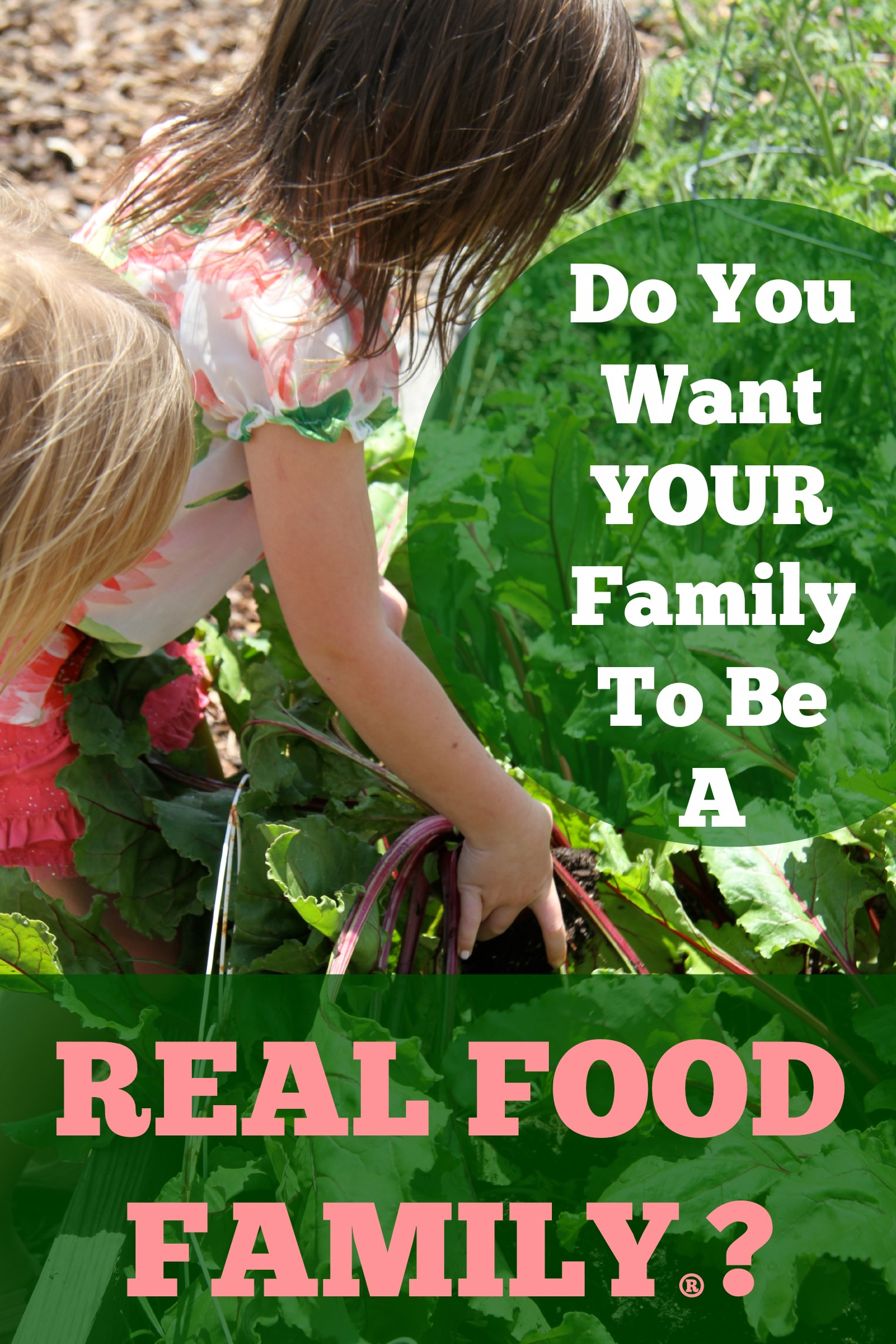 Real Food Family University: Introduction